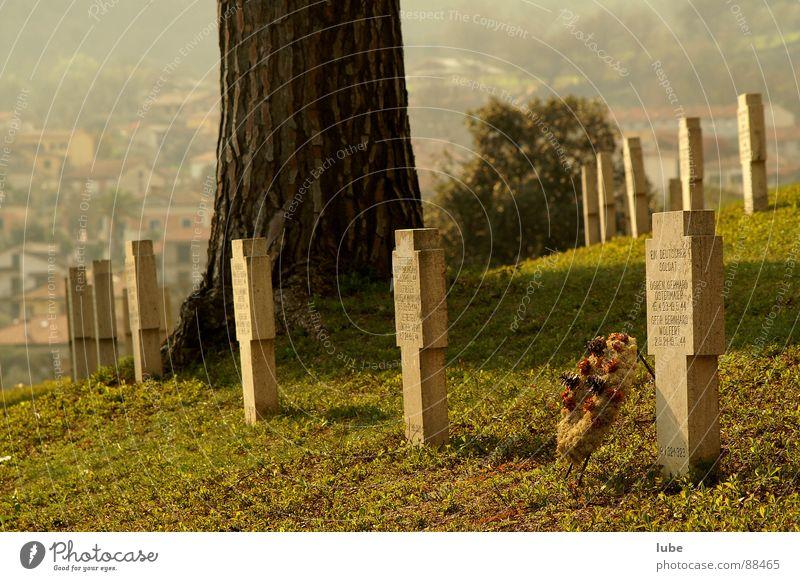 Soldatenfriedhof Blumenkranz Trauer Grab Verzweiflung Freidhof Rücken