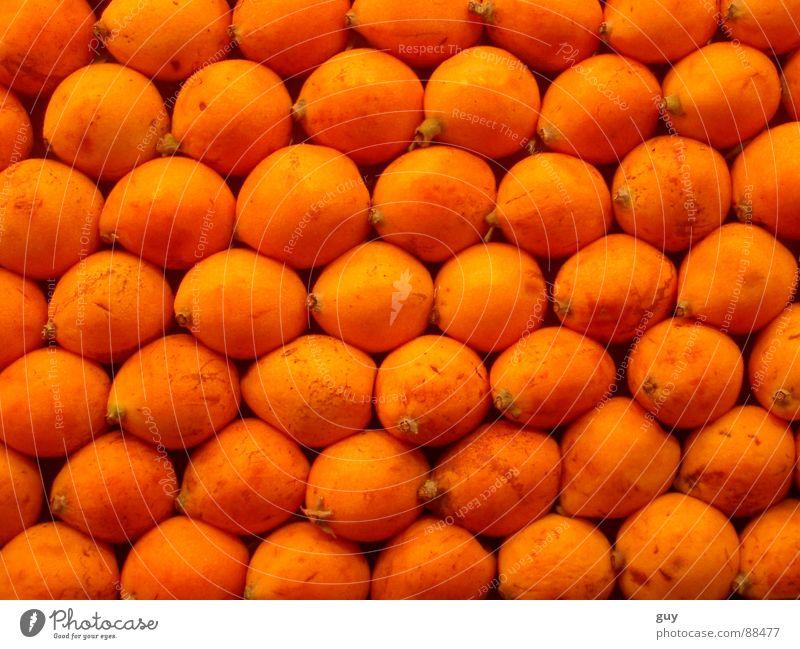Orangenlandschaft Ernährung Frucht Vegetarische Ernährung Lebensmittel Obst- oder Gemüsestand Ordnungsliebe Reihe Vitamin Gesundheit