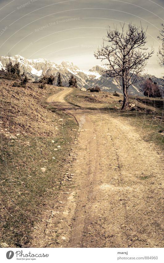 Der führt sicher da rauf? Natur Ferien & Urlaub & Reisen Landschaft Wolken Ferne Berge u. Gebirge Traurigkeit Straße Herbst Wege & Pfade Frühling Tod braun