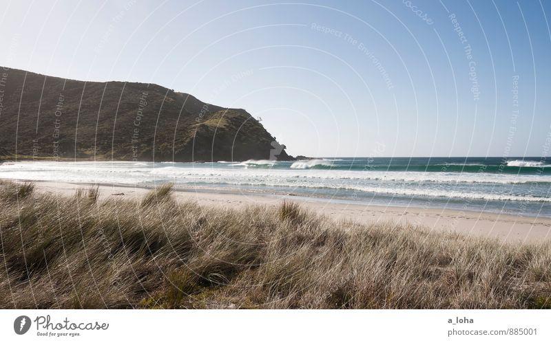 summer. reloaded. Himmel Natur Ferien & Urlaub & Reisen Pflanze Wasser Sommer Meer Einsamkeit Landschaft Strand Ferne Wald Umwelt Küste Gras Sand