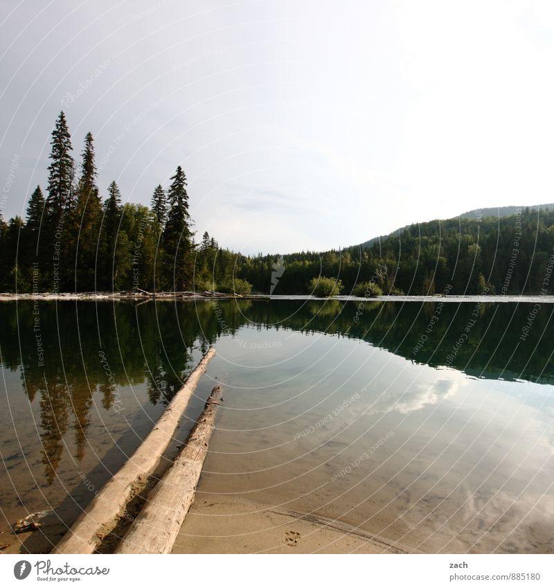 klares Wasser Himmel Natur Ferien & Urlaub & Reisen blau Pflanze grün Sommer Baum Landschaft Ferne Wald Holz See Park Idylle