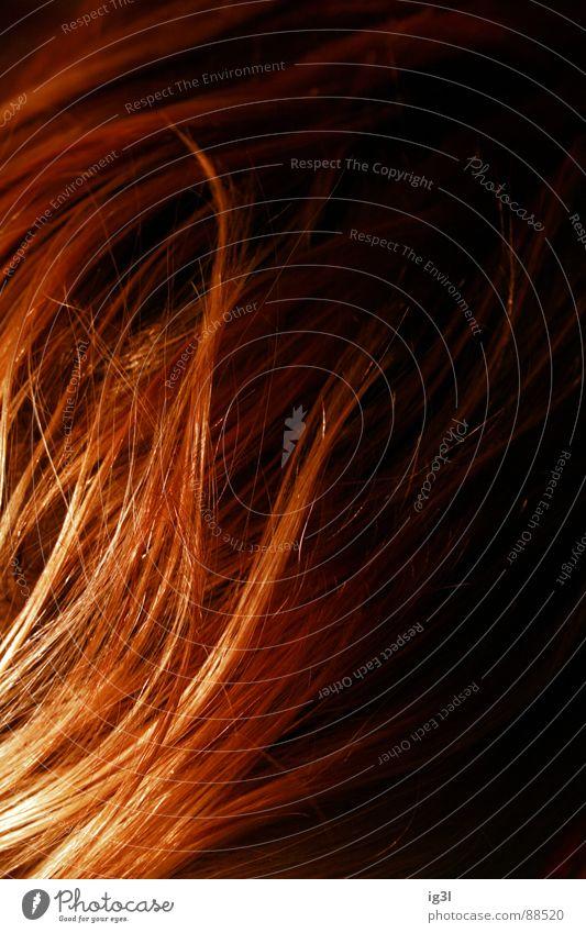 der HAARte kern #2 schön rot Farbe schwarz gelb dunkel Wärme Haare & Frisuren Kopf hell glänzend groß Spitze Reinigen Sauberkeit Fell