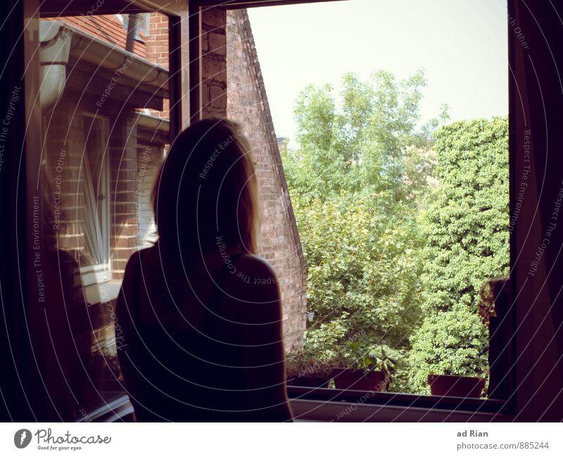 Das Gefühl von zu Hause. Haare & Frisuren Wohnung einrichten Innenarchitektur Raum Küche Dachboden Mensch feminin Jugendliche Erwachsene Rücken 1 Topfpflanze
