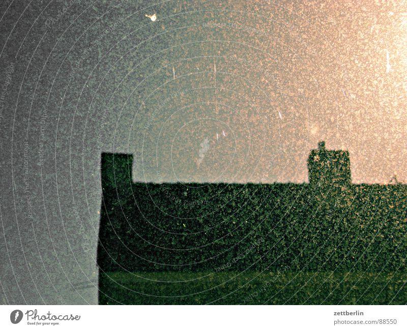 Fensterleder {n} = chamois Glasscheibe Fensterscheibe dreckig Staub staubig Fliegendreck geheimnisvoll Reinigen Raumpfleger Detailaufnahme obskur Himmel