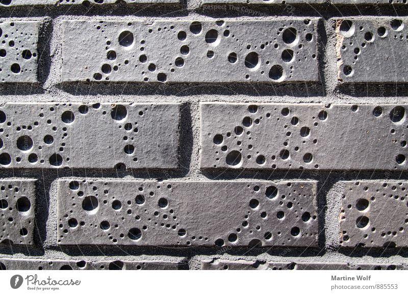 Kääääse? Stadt Wand Mauer Kunst Europa Käse Estland Tallinn