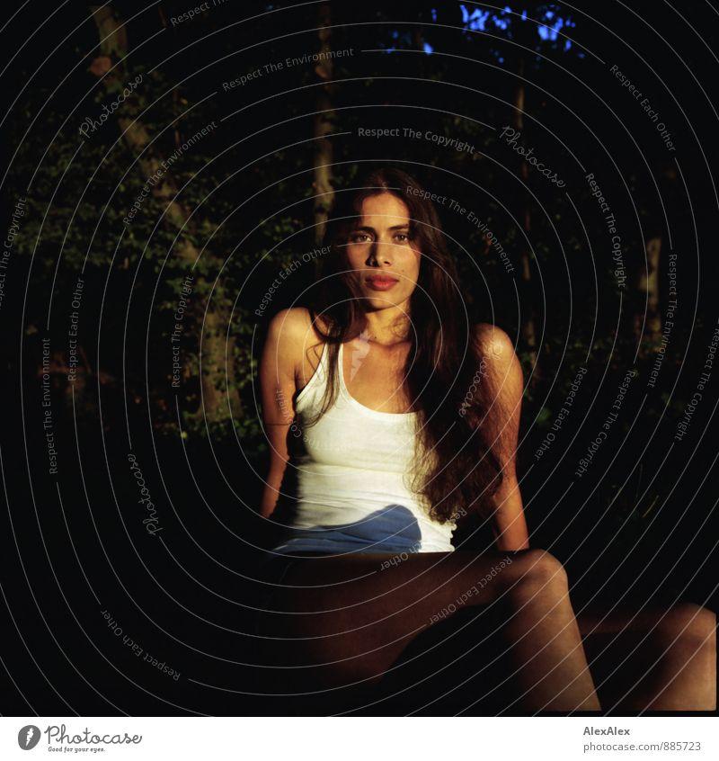 analoges Portrait einer jungen, sportlichen, schönen Frau auf einer Waldlichtung in der Abendsonne Abenteuer Junge Frau Jugendliche 18-30 Jahre Erwachsene Natur