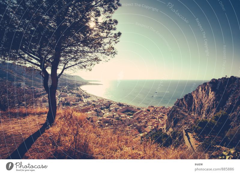 Schattenspendend Natur Ferien & Urlaub & Reisen Baum Meer Landschaft Haus Umwelt Berge u. Gebirge Reisefotografie Gefühle Küste Stimmung Idylle Schönes Wetter