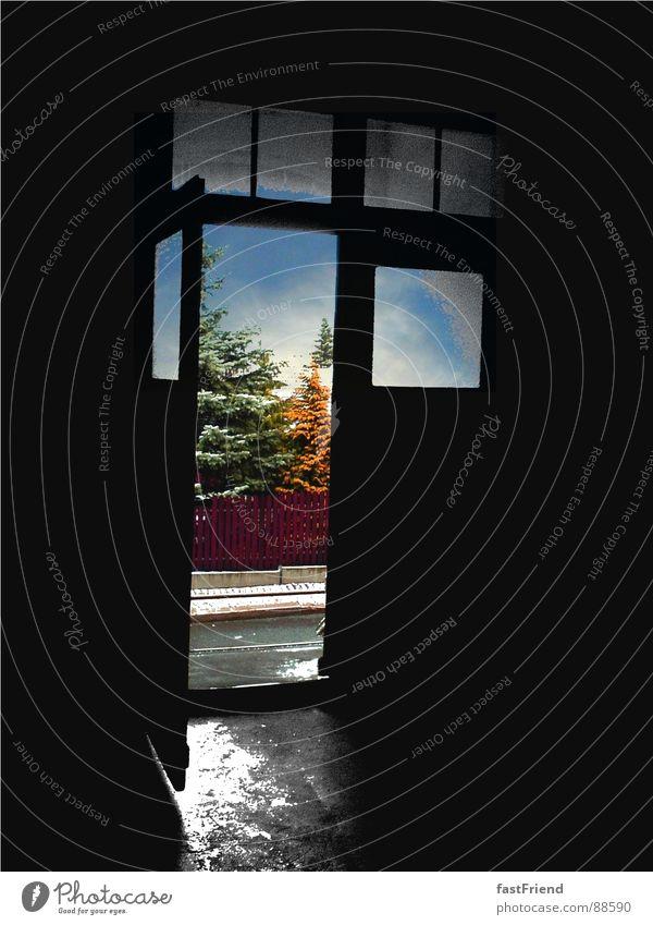 Ausweg Flur Fenster Baum mehrfarbig grau Hoffnung schwarz Ausgang Tor Aussicht nass Steinboden Tanzfläche Himmel historisch Tür Treppe blau Straße offen Glas