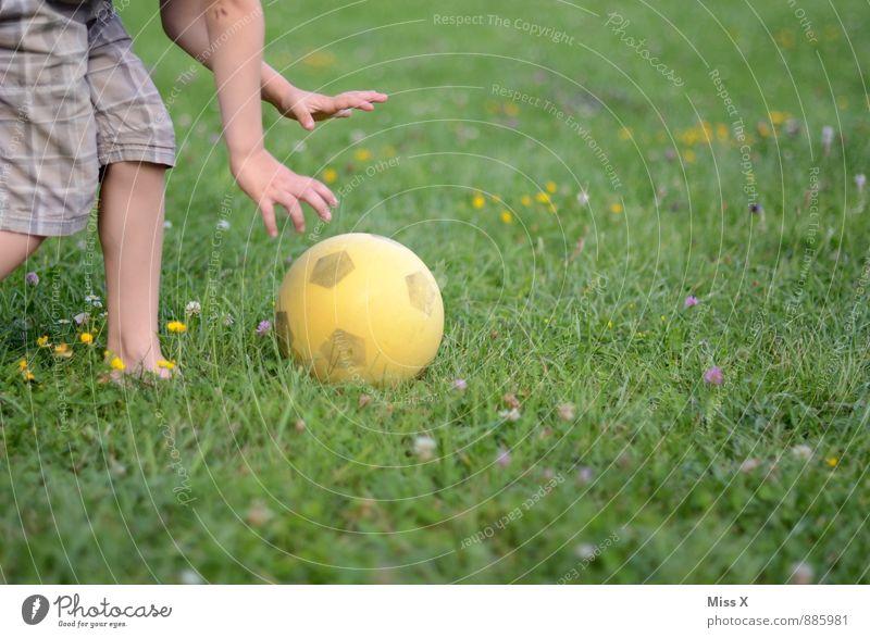 Anpfiff Mensch Kind Freude Gefühle Wiese Junge Sport Spielen Beine Stimmung Freizeit & Hobby Kindheit Arme laufen Fußball