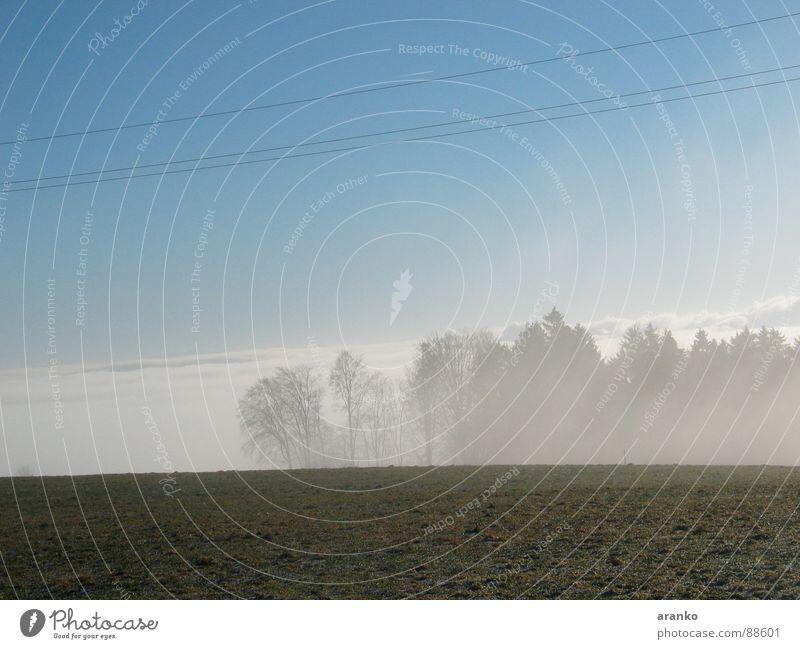 nebelig Nebel Wolkendecke über den Wolken Nebelbank Wiese Wald Horizont Himmel wald im nebel