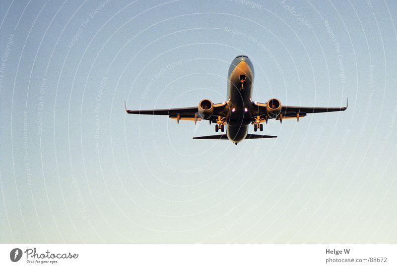 Long way home Himmel blau Ferien & Urlaub & Reisen Freiheit Flugzeug Luftverkehr Unendlichkeit Maschine kommen Triebwerke wiederkommen Passagierflugzeug