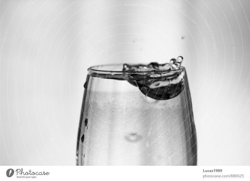 Tropfen im Glas Getränk trinken Erfrischungsgetränk Trinkwasser Wein Weinglas tropfend Schwarzweißfoto Innenaufnahme Textfreiraum links Textfreiraum rechts
