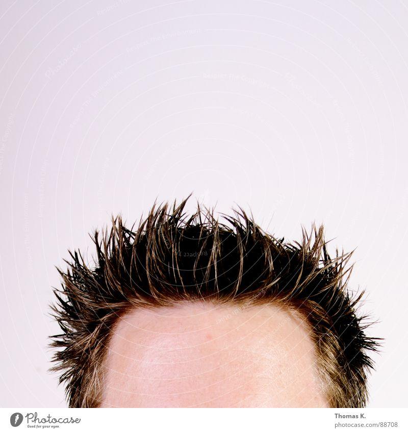 5600K°.......die Frisur sitzt. Mann Kopf Haare & Frisuren Stil Haut Friseur stachelig Stirn Haarschnitt Gel Haaransatz Haargel Geheimratsecken