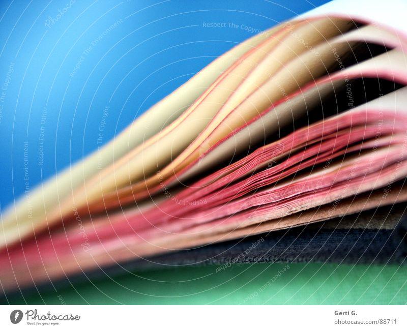 alter Schinken blau grün weiß rot Zusammensein hell rosa offen Buch geschlossen lesen Bildung Tiefenschärfe Seite antik
