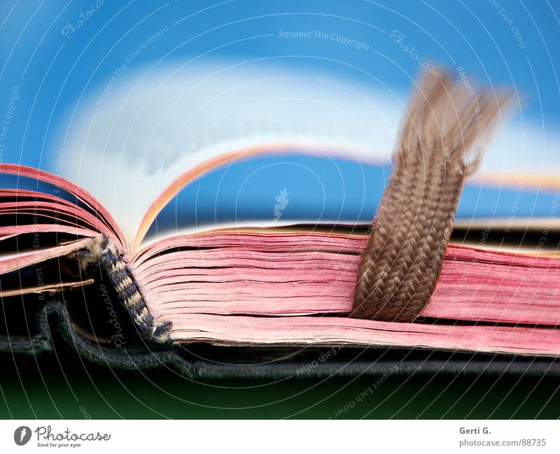jowblob blau weiß rot Kunst braun hell rosa offen Schriftzeichen Wind Buch geschlossen Kultur lesen Buchstaben Bildung