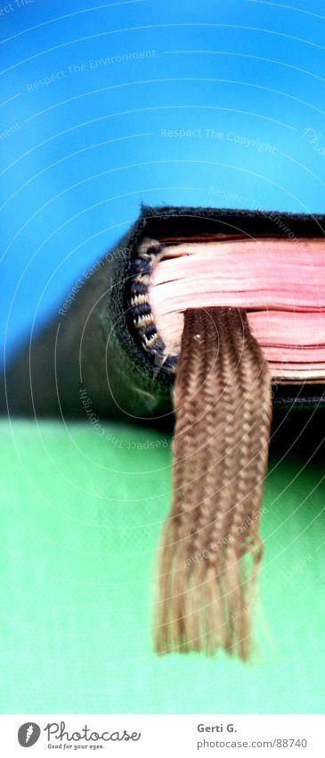 bookmark Erholung rot ruhig braun hell liegen Buch geschlossen Ecke lesen festhalten Bildung Seite Literatur Zeitschrift Druck