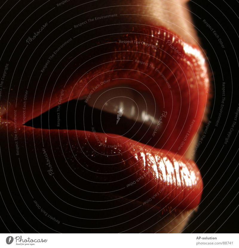 rote Lippen *2 Mensch Frau rot feminin Gefühle glänzend Haut Mund Zähne Lippen Küssen Leidenschaft Kosmetik Schminke Lust Lippenstift