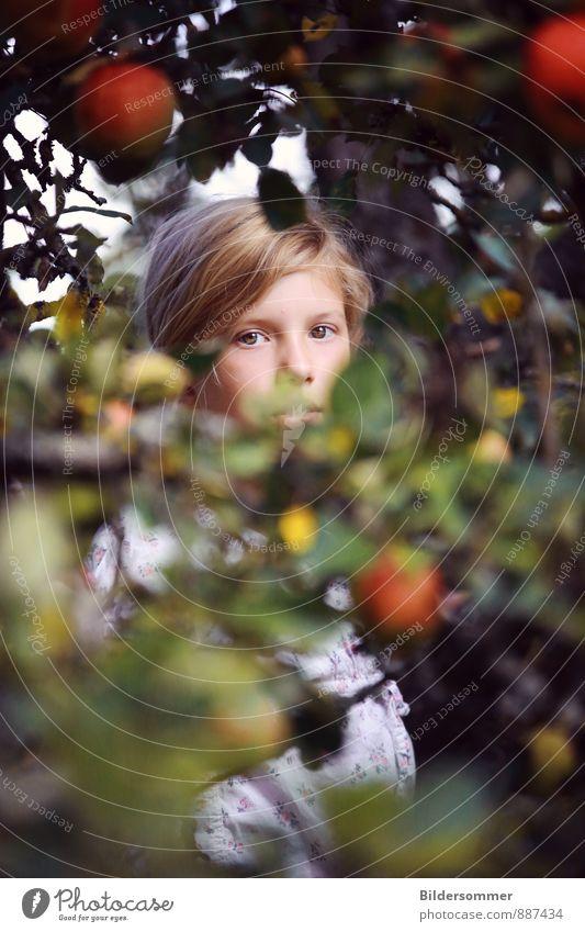 | Mia | Mensch Kind Natur Jugendliche Pflanze Sommer Baum Erholung Junge Frau Blatt Mädchen Auge Gefühle Herbst feminin Garten