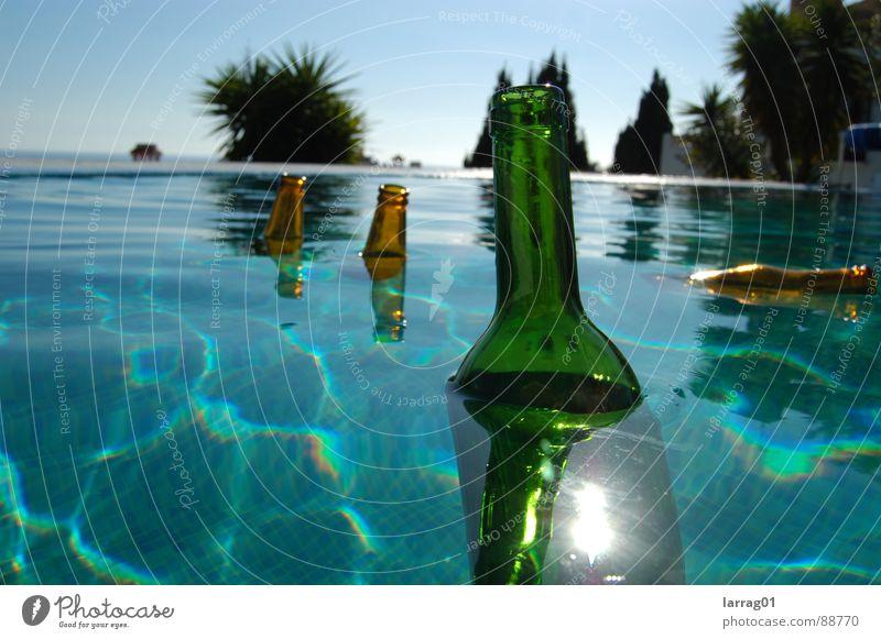 Dinge im Pool 2 Palme Bierflasche Weinflasche türkis grün braun Sommer Sonne strahlend Im Wasser treiben mehrfarbig Stillleben Schweben Strandgut Schwimmbad