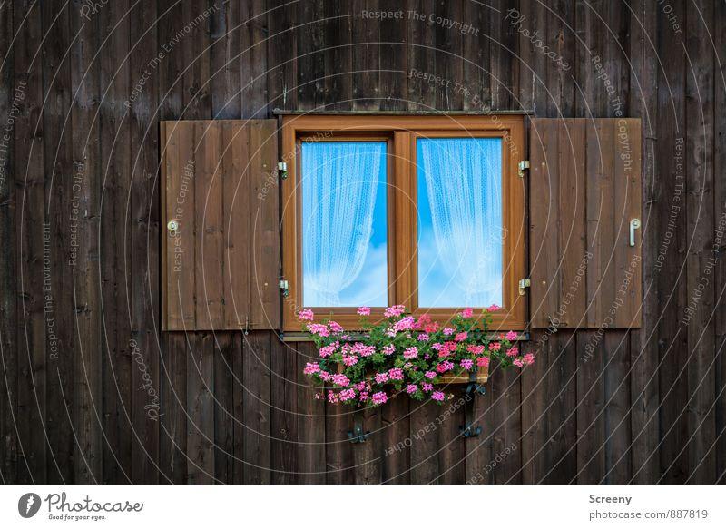 Bock aufs Fensterln? Ferien & Urlaub & Reisen Tourismus Ausflug Himmel Wolken Sommer Pflanze Blume Dorf Fassade Fensterladen Klischee ruhig Freizeit & Hobby