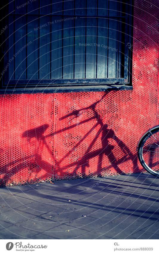 fahrräder sind schöner blau rot Fenster Wand Straße Wege & Pfade Mauer Freizeit & Hobby Verkehr Fahrrad Schönes Wetter Fahrradfahren Gitter parken Fahrradlenker Fahrradsattel