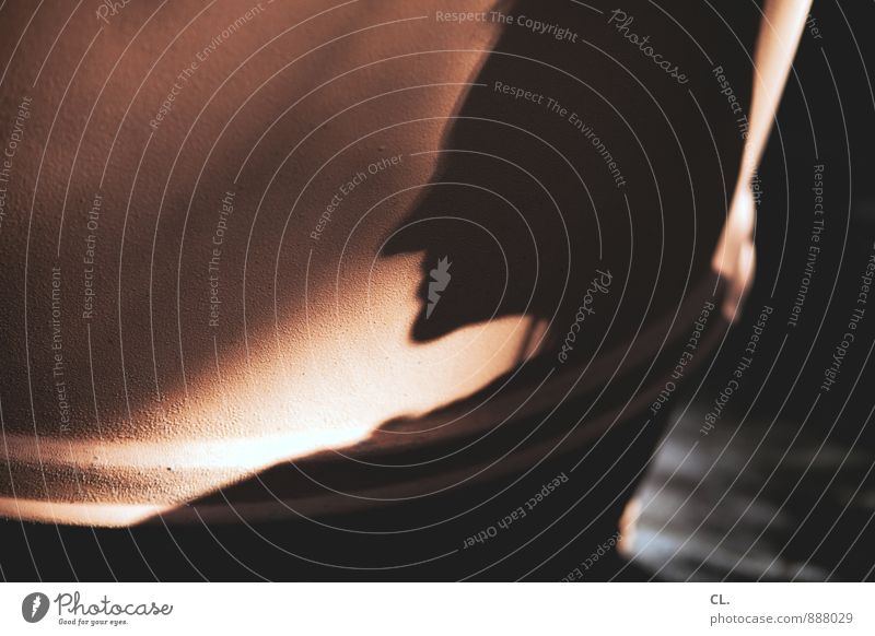 typveränderung Mensch Erwachsene Leben 1 Identität einzigartig Wandel & Veränderung Schattenspiel Schattenseite Schattendasein Farbfoto Außenaufnahme Tag Licht