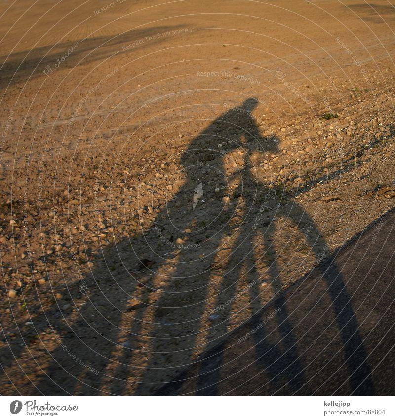 easy rider II Fahrrad Selbstportrait Motorradfahrer Feld Landwirtschaft Sonnenuntergang Fahrradtour Fahrradweg Brandenburg Mountainbike Spielen Schatten