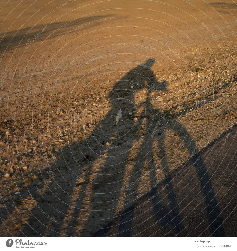 easy rider II Landschaft Spielen Fahrrad Feld Landwirtschaft Selbstportrait Brandenburg Mountainbike Fahrradtour Fahrradlenker Fahrradweg Motorradfahrer
