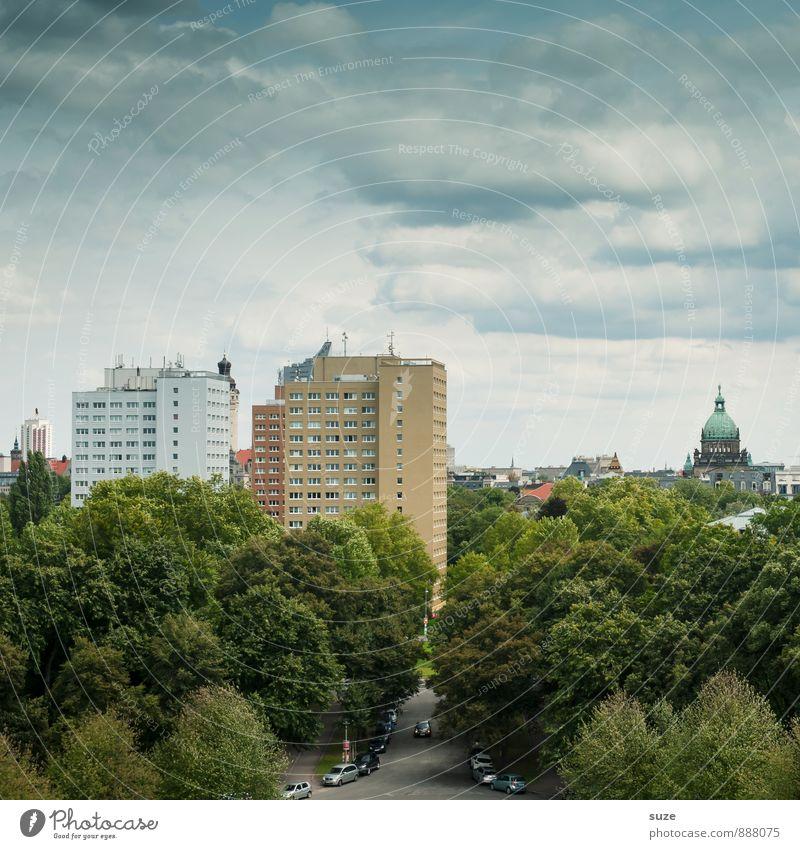 Stadtgrün ruhig Häusliches Leben Wirtschaft Umwelt Himmel Baum Park Stadtrand Hochhaus Gebäude Architektur Fassade Wachstum hoch nachhaltig Mittelpunkt