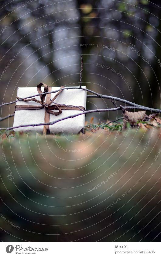 Geschenk Feste & Feiern Weihnachten & Advent Geburtstag Natur Herbst Winter Gras Blatt Garten Wiese Wald Verpackung Paket Schleife braun Herbstlaub Ast