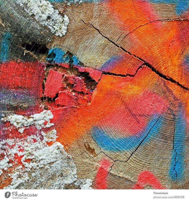 BaumEnde. Umwelt Holz Ziffern & Zahlen Schilder & Markierungen Linie blau orange rot schwarz weiß Gefühle Pilz Jahresringe Riss Graffiti Farbfoto mehrfarbig