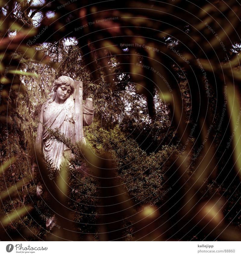 angel of berlin Friedhof Angelrute Religion & Glaube Protestantismus Katholizismus Evangelium Martin Luther Grab Teufel böse Tanne Tannenzweig Tracht Statue