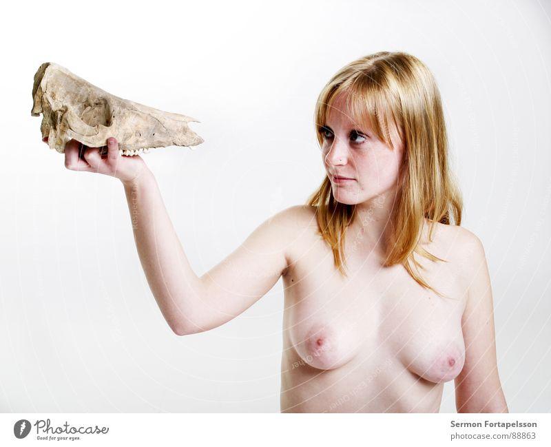 D. van der Nies 7179 Frau nackt weiß blond rothaarig Tier bleich ausgebleicht hart weich Skelett Kopf Akt Säugetier Haut hell Auge Gesicht Haare & Frisuren