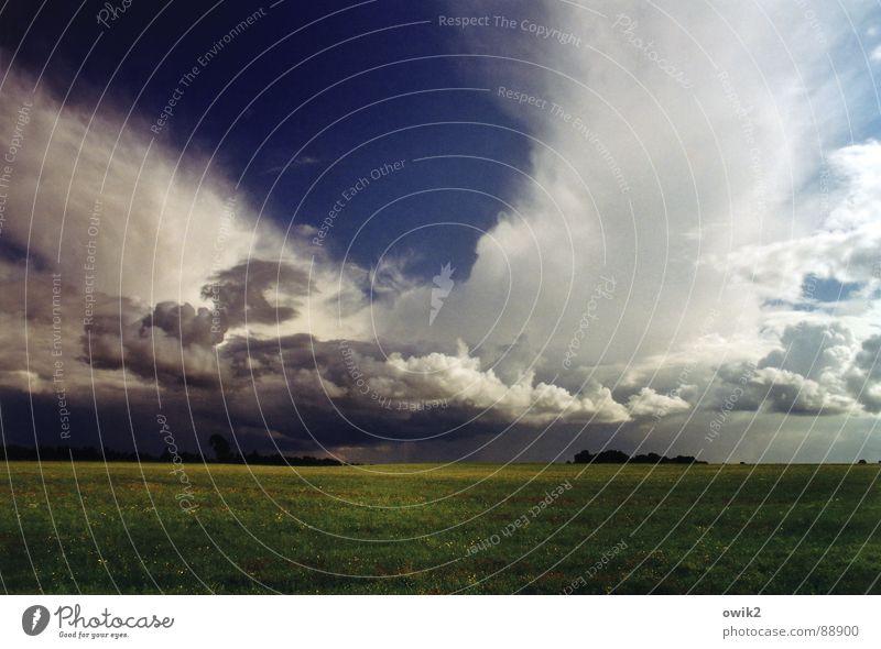 Schwedische Wetterwirtschaft Natur Himmel Sommer Ferien & Urlaub & Reisen dunkel Wiese Gras Landschaft Luft Feld Umwelt groß Horizont Erde Tourismus