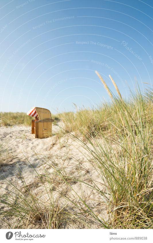 Spätsommmertag. Erholung ruhig Ferien & Urlaub & Reisen Ausflug Sommer Sommerurlaub Strand Meer Umwelt Natur Landschaft Himmel Schönes Wetter Dünengras Küste