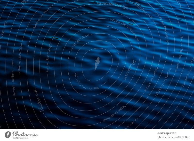 Was will man, Meer quer. Umwelt Natur Landschaft Urelemente Wasser Sommer Wellen Küste Seeufer Fjord Ostsee Gefühle Glück Fröhlichkeit Zufriedenheit
