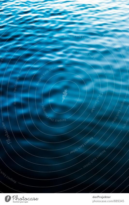 Einfach blau Umwelt Natur Landschaft Pflanze Urelemente Wasser Sommer Schönes Wetter Wellen Küste Seeufer Bucht Fjord Ostsee Meer ästhetisch sportlich
