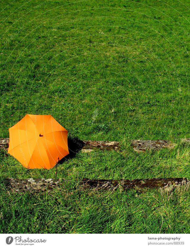 The Green Ocean Cloppenburg Regenschirm Sonnenschirm Unwetter Wolken Gras Halm Wiese Sommer Feld grün Frühling ruhig Einsamkeit Erholung Sonnenbad vergessen