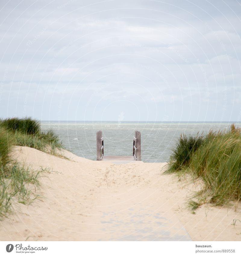 abgang ins meer. Leben Erholung ruhig Ferien & Urlaub & Reisen Tourismus Ausflug Ferne Freiheit Natur Landschaft Sand Himmel Wolken Klima Wetter Gras Wellen