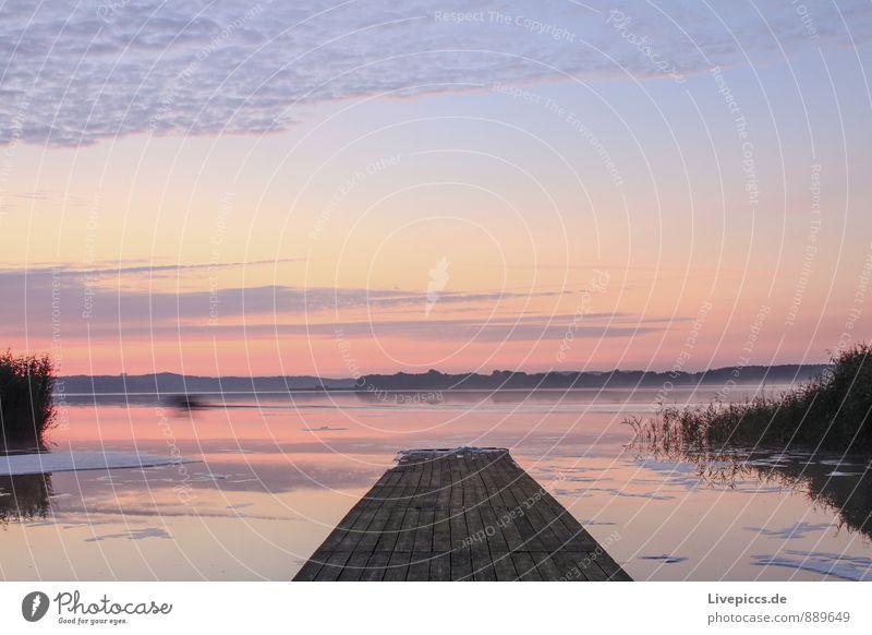 am Ruderhaus auf Rügen Himmel Natur Ferien & Urlaub & Reisen Pflanze blau Sommer Wasser Sonne Landschaft ruhig Wolken Umwelt Freiheit See rosa orange