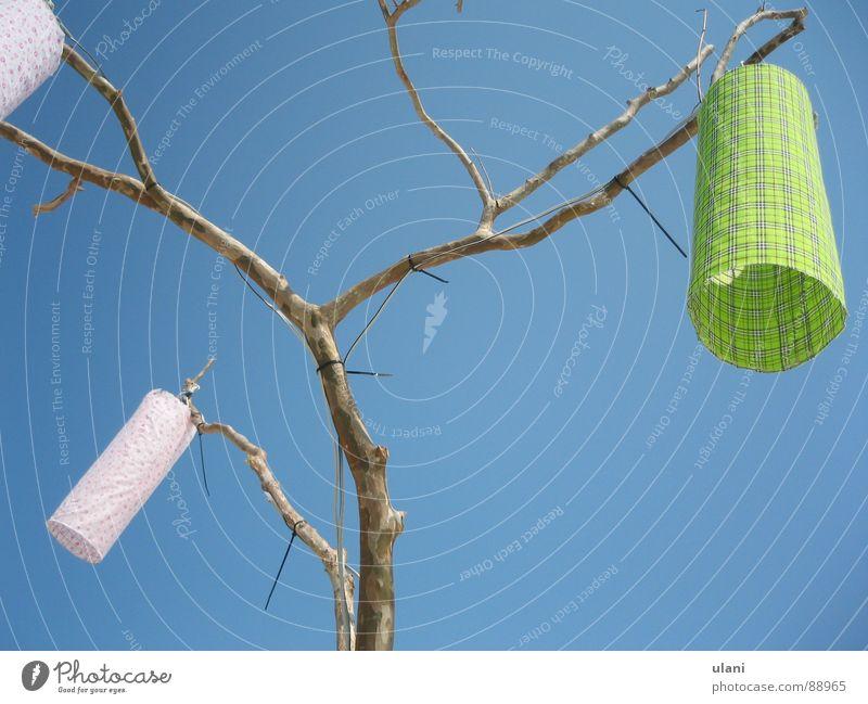 Baumbeleuchtung 2 Himmel Sommer Strand Ferien & Urlaub & Reisen Lampe Beleuchtung rosa Elektrizität Kabel Ast Thailand Koh Samui