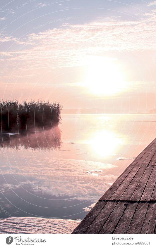 am Ruderhaus auf Rügen Himmel Natur Ferien & Urlaub & Reisen blau Pflanze Wasser Sommer Sonne Landschaft Wolken Umwelt gelb Wärme Freiheit See hell