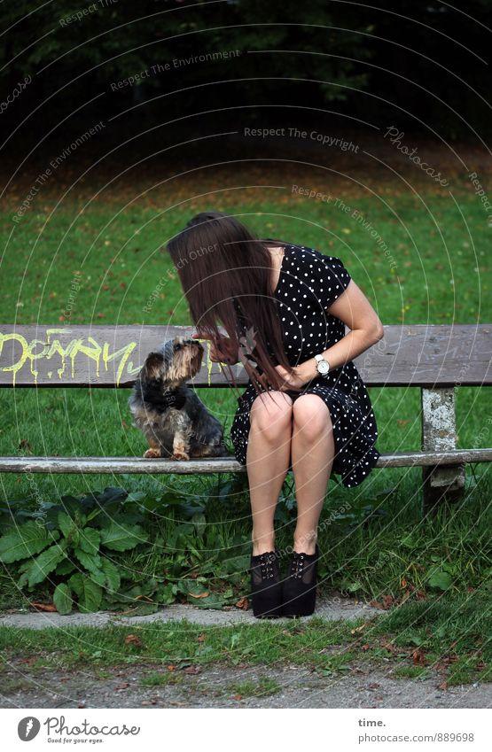 . feminin 1 Mensch 18-30 Jahre Jugendliche Erwachsene Park Wiese Parkbank Kleid brünett langhaarig Tier Haustier Hund Sympathie Freundschaft Zusammensein