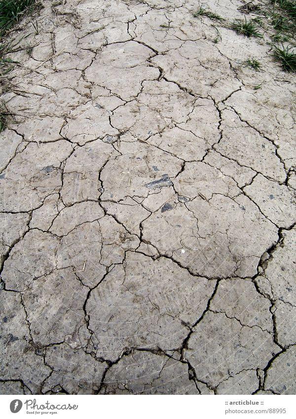 Boulevard Sommer Tod Gras grau Wege & Pfade Wärme Wetter Erde Bodenbelag Klima Wüste Physik Vergänglichkeit heiß trocken Erdöl