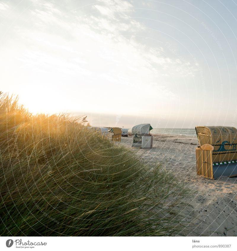 Spätsommertag Himmel Ferien & Urlaub & Reisen Sommer Sonne Meer Erholung ruhig Strand Gras Küste Freiheit Sand Horizont Tourismus Ausflug Beginn