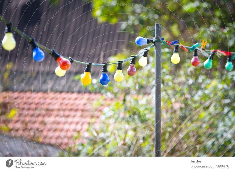 bunte Birnen Freizeit & Hobby Feste & Feiern Gartenfest Herbst Baum Dach Partystimmung ästhetisch Freundlichkeit Originalität positiv mehrfarbig Stimmung Freude