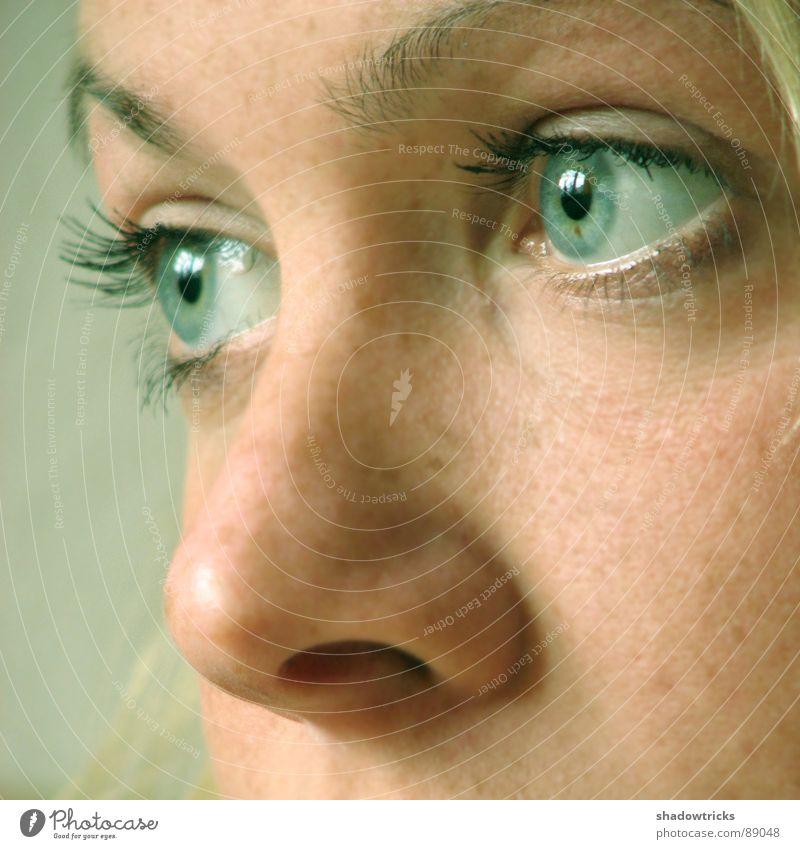 Traum Frau grün blau Gesicht Auge feminin träumen Haare & Frisuren Traurigkeit Denken Haut blond Nase Zukunft Aussicht