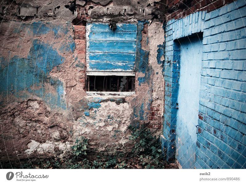 Blauverliebt alt blau Fenster Wand Mauer Kunst Stimmung Fassade frisch verrückt Vergänglichkeit Kultur planen Wandel & Veränderung rein verfallen
