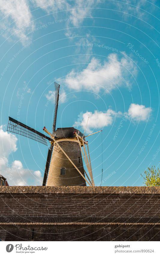 Windkraft Leben harmonisch Zufriedenheit Erholung ruhig Meditation Ferien & Urlaub & Reisen Tourismus Sommerurlaub Technik & Technologie Wissenschaften