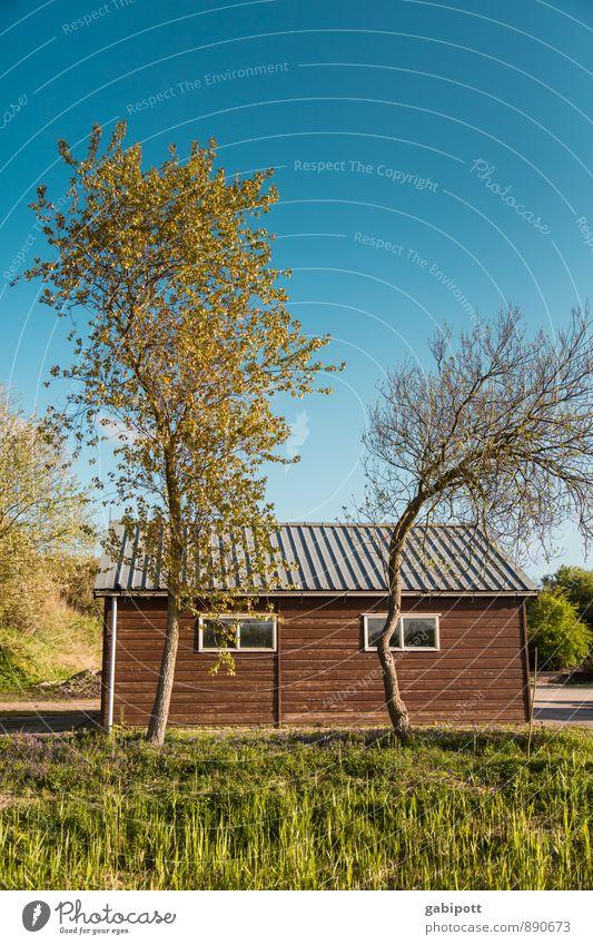 krumm und krummerich Himmel Natur Ferien & Urlaub & Reisen Pflanze Farbe Sommer Sonne Baum Erholung ruhig Haus Leben Gras Fassade Idylle Zufriedenheit